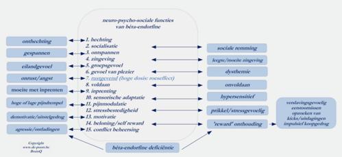 exorfinen-functies