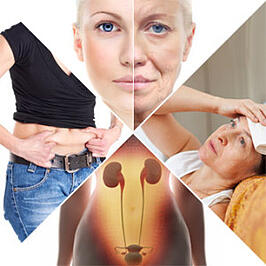 Afvallen tijdens de menopauze - afvallen in de overgang
